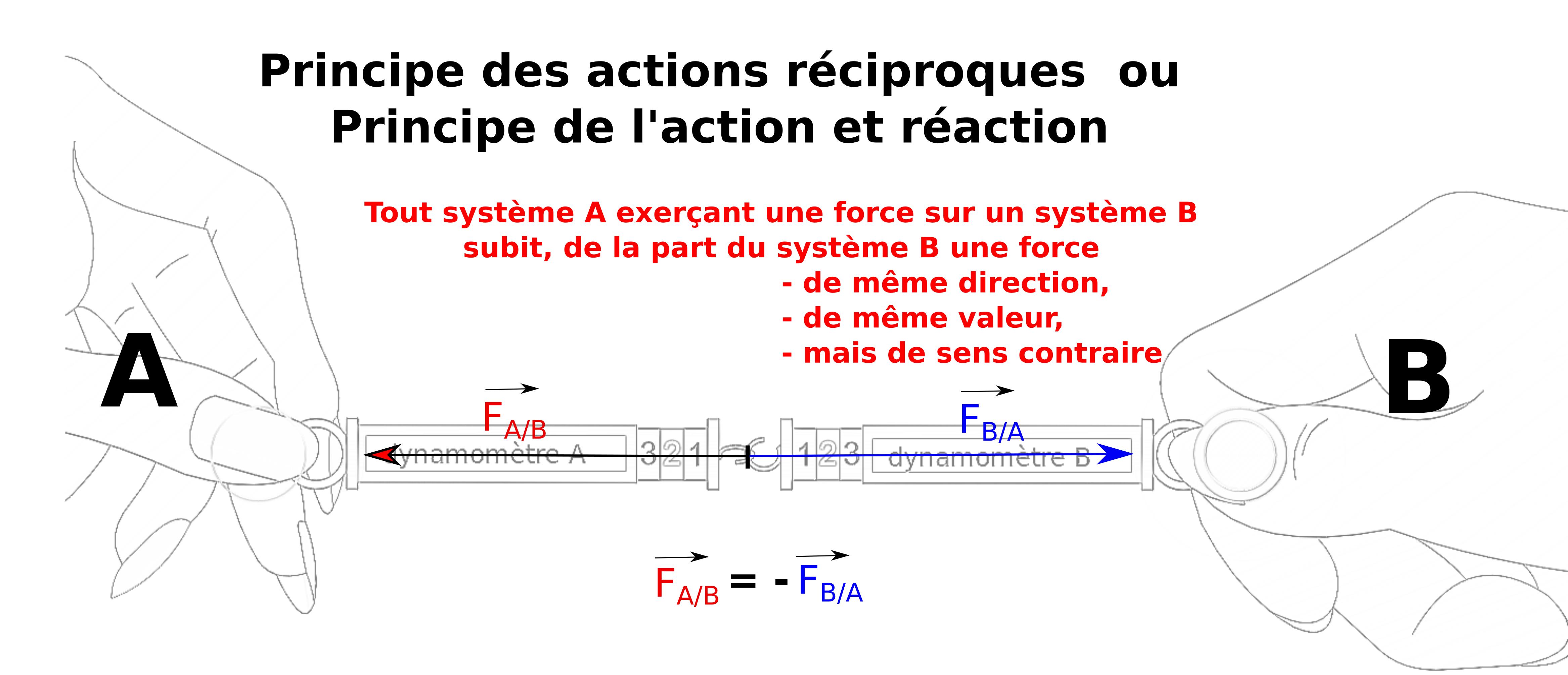ActionsReciproquesComplet.png