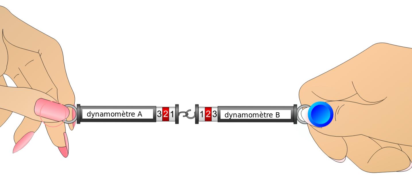 DynamometresAnim3N.png