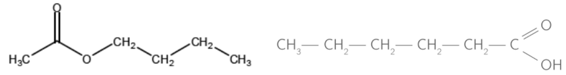 IsomerFonctionfsd.png